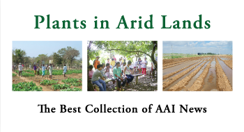 Plants in Arid Lands The Best Collection of AAI News